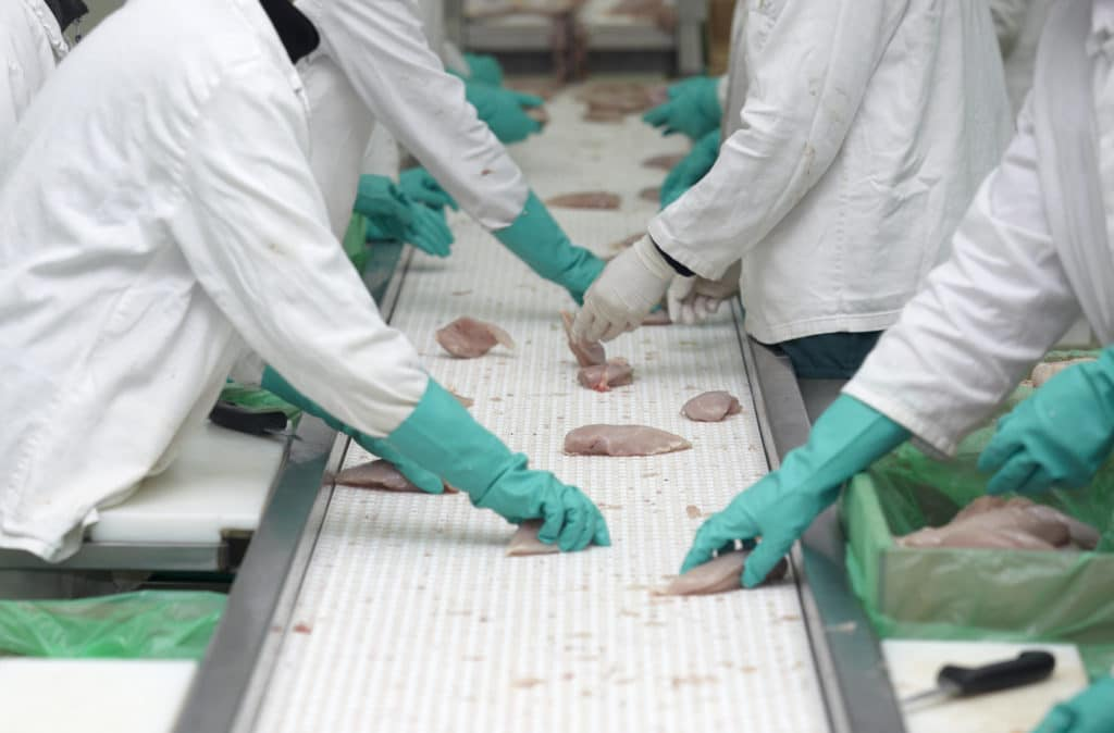 food industry sanitize and disinfect
