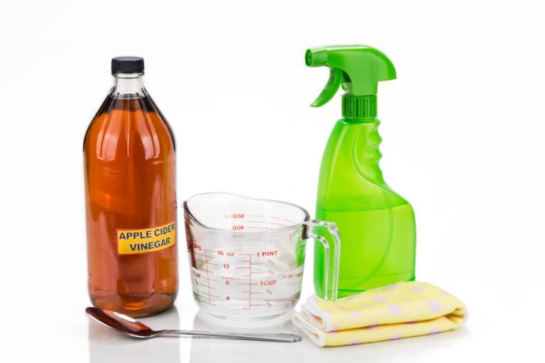 Does Vinegar Kill Viruses