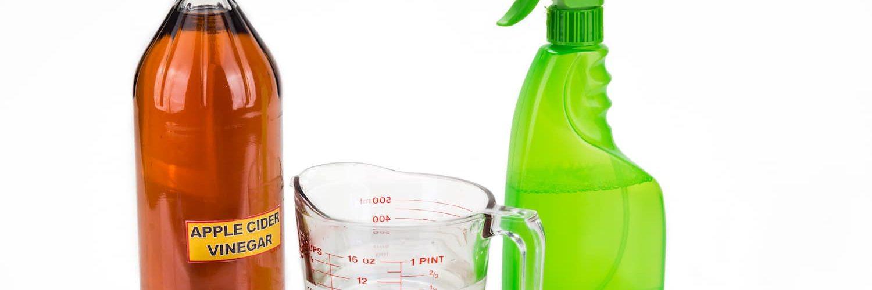 Does Vinegar Kill Viruses